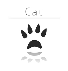 Cat animal track vector image