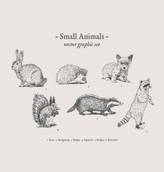 small animals vintage set vector image
