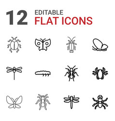 12 insect icons vector