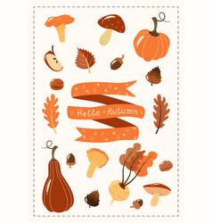 Autumn set hand drawn vegetables pumpkin ribbon vector