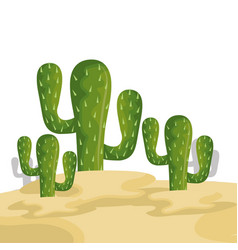 Cactus mexican plant icon vector