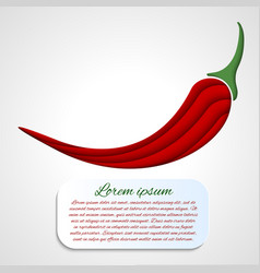 card with chilli pepper vector image