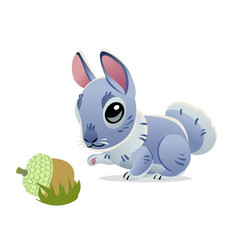 cute rabbit with an acorn isolated on white vector image