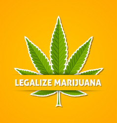 Legalize marijuana hemp leaf on yellow background vector