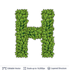 Letter h symbol of green leaves vector