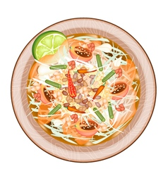 Plate of Green Papaya Salad with Dried Shrimps vector image