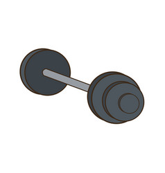 dumbbell weight gym metal equipment vector image vector image