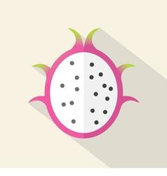 Dragon Fruit Part Flat Design vector image vector image