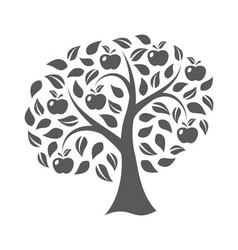 Apple tree vector image