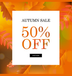 autumn sale orange poster vector image