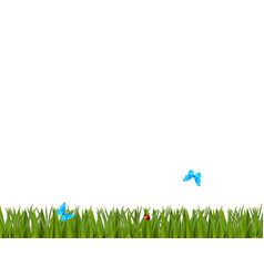 green realistic grass border with ladybug and vector image