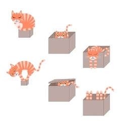 Set of cute cartoon cats in boxes vector image