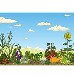 Vegetable garden bed vector