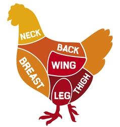 chicken cuts diagram vector image