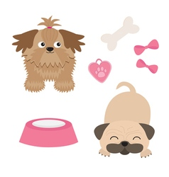 Shih Tzu and pug mops dog set Isolated Flat design vector image vector image