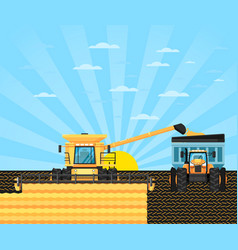 Agricultural combine harvester in grain field vector