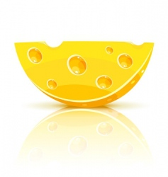 cheese segment vector image