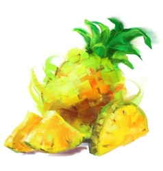 Drawing pineapple with a slice vector
