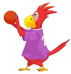 Funny Parrot Basketball vector image