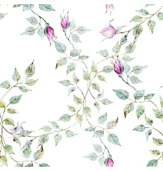 Gentle roses pattern vector image
