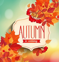 Autumn is coming background vector image