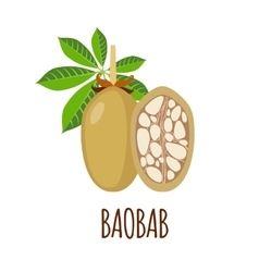 Baobab icon in flat style on white background vector