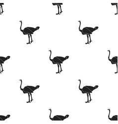 ostrich icon in black style isolated on white vector image vector image