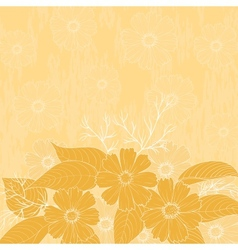 Flowers cosmos background vector image vector image