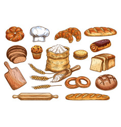 Bakery bread and pastry cakes sketch vector