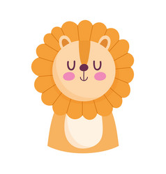 cute lion little animal cartoon isolated design vector image