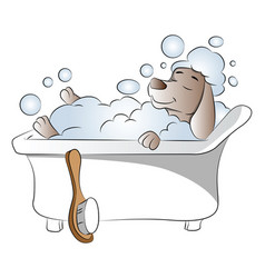 dog in bathtub vector image