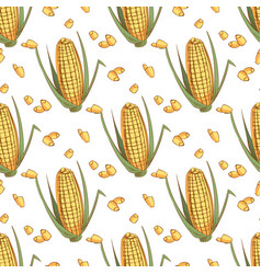 hand drawn sketch ear of corn seamless pattern vector image