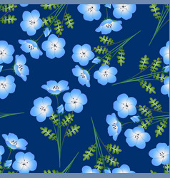 nemophila baby blue eyes flower on indigo vector image