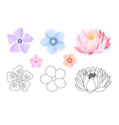 Pink lotus periwinkle forget-me-not pattern vector