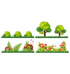 set of decoration plant vector image