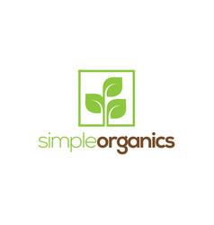 simple leaf logo design template vector image
