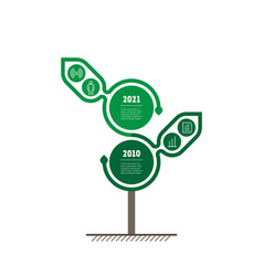 timeline or infographics development and growth vector image