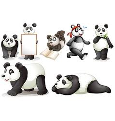 Seven pandas vector image vector image