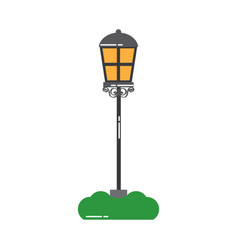 street lamp light with grass decoration vector image vector image