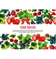Berry and fruit cartoon poster template design vector