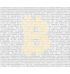 Bitcoin symbol binary code vector image