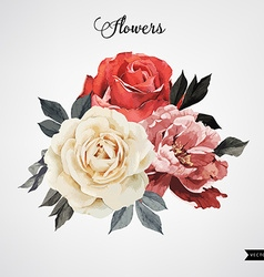 Bouquet of roses watercolor can be used as vector image