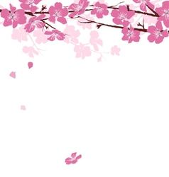 Branches with flowers isolated on white vector