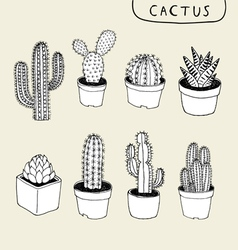Cactus Hand Drawn vector