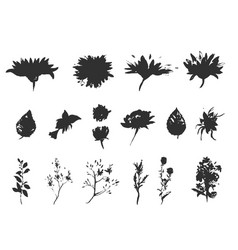 floral set collection with leavesspring vector image