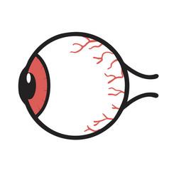 Human red eyeball anatomy vector