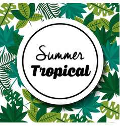 summer tropical badge with exotic leaves vector image