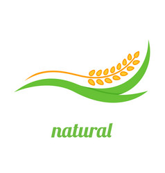 Wheat logo template icon design vector