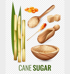 Cane sugar transparent set vector