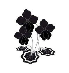 bush silhouette of violets vector image